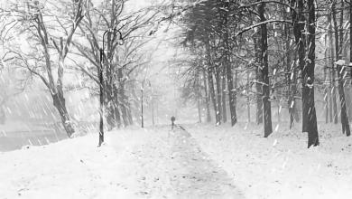 Photo of انذار هيئة الارصاد الجوية لإنزلاقات في الشوارع بعد اعصار الفا الثلجي