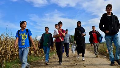 Photo of الهجرة السويدية تعطي معلومات خاطئة بشأن تحليلات العمر لطالبي اللجوء القصر