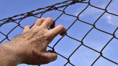 Photo of سجون السويد أهانة ظلم لكل شخص مستضعف في المجتمع السويدي
