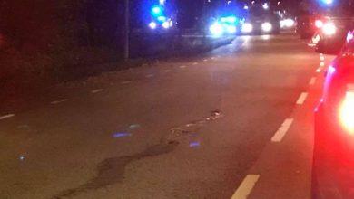 Photo of مقتل شابين وجرح اربعة اخرين في اطلاق نار  مدينة مالمو السويدية