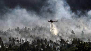 Photo of أخر تطورات الحرائق في جميع إنحاء السويد والخسائر المترتبة عليها