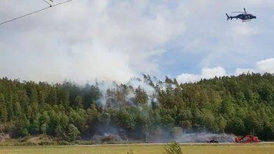 Photo of أصطدام ثلاث سيارات مدنية يؤدي الى أشتعال حرائق غابات في اودفالا