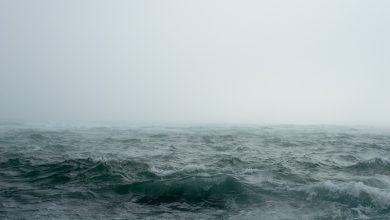 """Photo of طرق التحضيرات للعاصفة """"كنود""""والتي من الممكن أن تستمر لعدة أيام"""