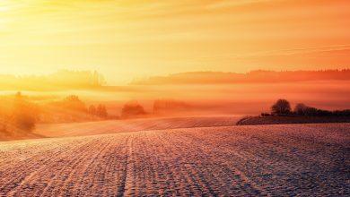 Photo of درجات الحرارة في السويد تعاود الأرتفاع مرة أخرى في الأيام القادمة