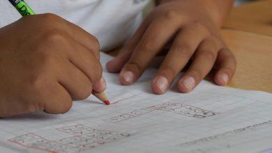 Photo of لجنة التعليم في بلدية ستيفان تورب تبدأ بمشروع تغريم أهالي الطلاب المتغيبين