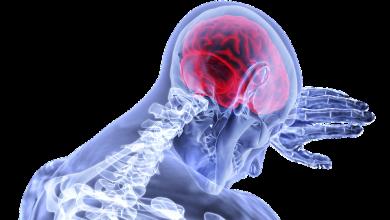 Photo of هل الأنسان مسير أم مخير ؟ حادثة طبيه تشرح تغيرات المخ وتاثيرها على تصرفات الانسان.