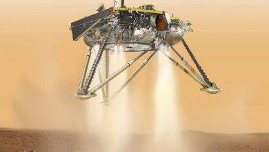 Photo of مسبار الفضاء InSight يهبط على سطح المريخ لأول مرة