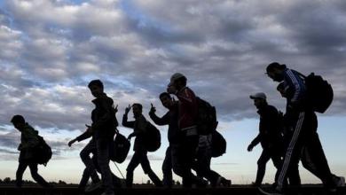 Photo of السويد في المرتبة ١٤ بين البلدان التي يحلم المهاجرين بالهجرة إليها