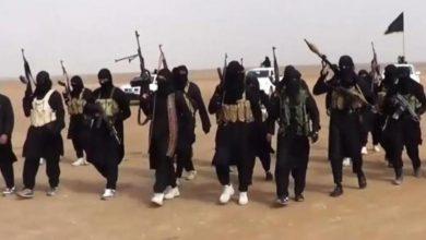 Photo of الاستخبارات السويدية: 100 من أعضاء داعش لم يعودوا للسويد بعد