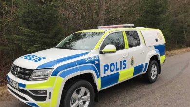 Photo of كلاب الشرطة السويدية المدللة