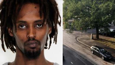 Photo of الحكم بالسجن والترحيل لصومالي قام بقتل شخص بعد إطلاق سراحه