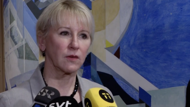 Photo of وزيرة الخارجية السويدية تعرب عن نيتها مساعدة أطفال ينتمون لعوائل داعش