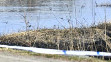 Photo of صيادون يعثرون على جثة مقتولة في سيلنتونا والشرطة تشتبه بوقوع جريمة