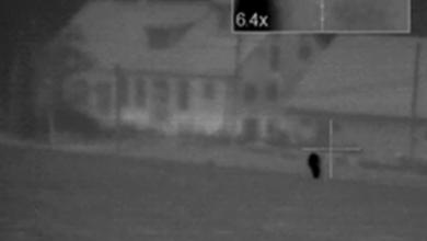 Photo of الحكم على صياد قام بقنص شخص يركض في الشارع