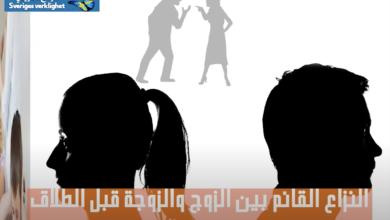 Photo of محامي عربي وسويدي حول جميع قضايا الأسرة والهجرة والجنائيات
