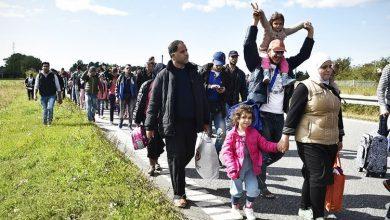 Photo of مصلحة الهجرة: المعاهدة الدولية لحقوق الطفل لن تساعد طالبي اللجوء