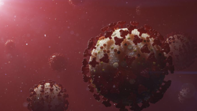 Photo of سلالة الفايروس الجديد يتم اكتشافه في عدة دول أوربية مع مخاوف من سرعته