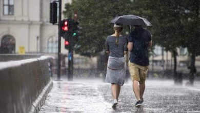 Photo of الأرصاد الجوية السويدية : طقس ممطر ومتقلب مستمر وصيف غائب لا بوادر قريبة له