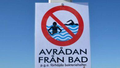 Photo of تحذير: انتشار البكتريا في أحد شواطئ مالمو والبلدية تحذر من السباحة في هذه المنطقة