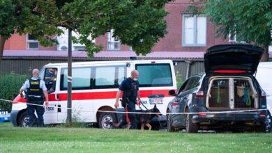 Photo of محكمة الاستئناف في الدنمارك: السجن المؤبد لثلاث أفراد سويديين
