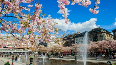 Photo of 10 طرق خارقة تجعل الحياة أسهل في ستوكهولم